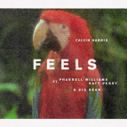 Calvin_Harris_-_Feels_cover_art
